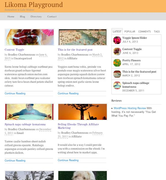 A magazine-style grid layout to highlight your latest posts in 2 columns.