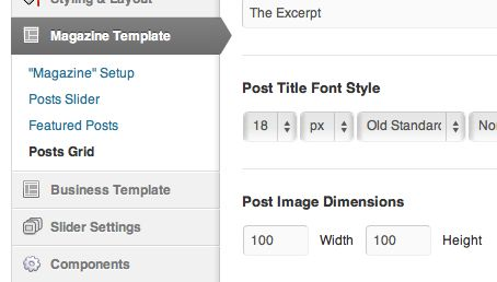 The featured image options for the Blog Layout are the same for the Posts Grid of the Magazine Layout.