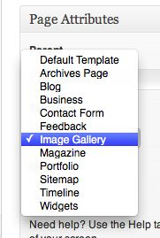 Select the Image Gallery template from the drop-down menu.