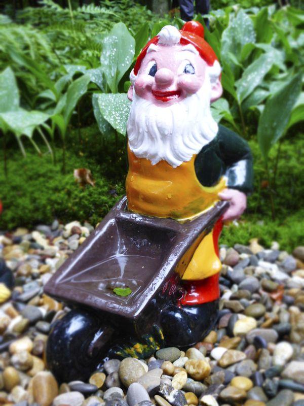 Make a WOO Wish and We'll Wheelbarrow it to ... Wonderland? Sorry ... ;-)
