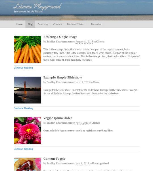By using the excerpt option, you get a clean overview of posts.