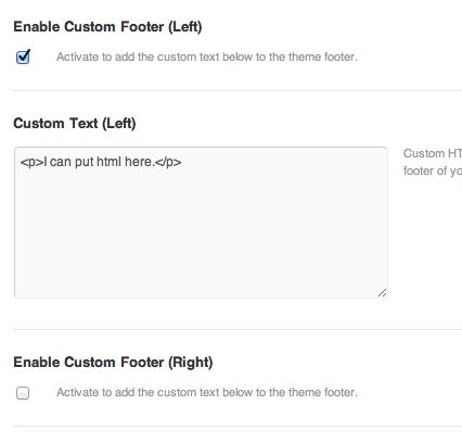 For the basic footer, there are just a few options as to what you can put in there.