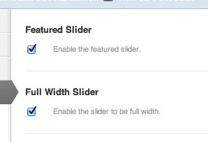 You do need to check the boxes for both the slider itself and then the full-width option.